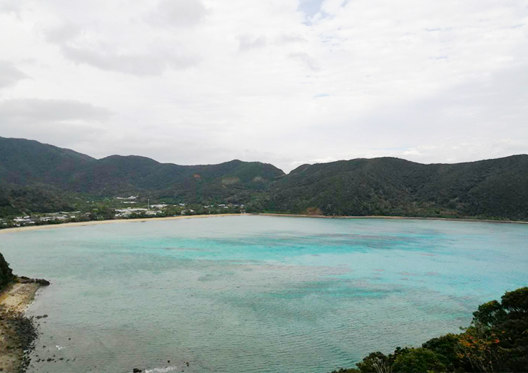 奄美群島 見学航路日記