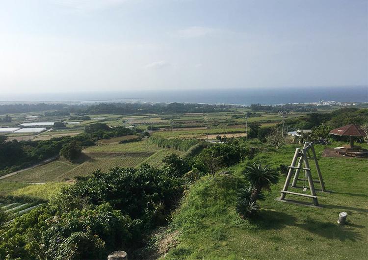 応援ナースとして喜界島で半年過ごしてみて…(富山県出身 看護師7年目)