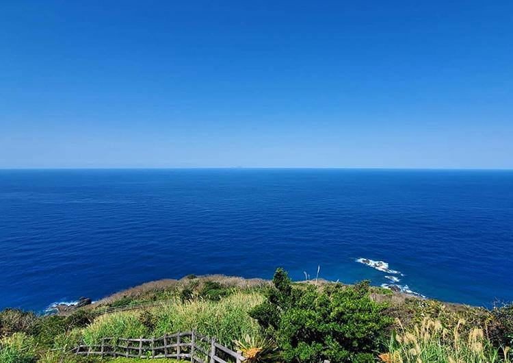 奄美大島に来て3カ月が経ちました(大阪府出身 看護師5年目)